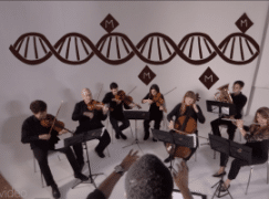 How DNA works: the secret's found in an orchestra