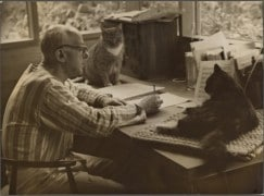 Composers and their cats (4)