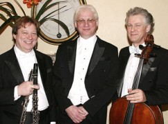 In praise of the orchestral pianist