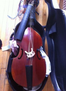 broken viol