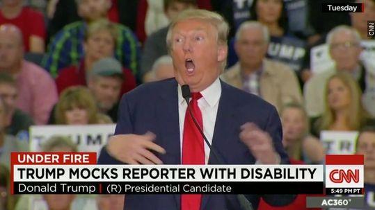 trump mocks reporter