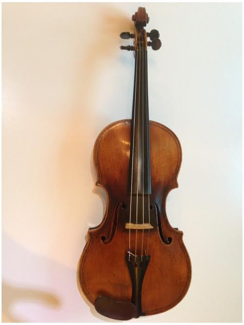 maggini violin