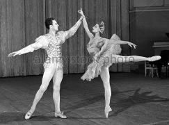 Bolshoi's former ballet chief dies