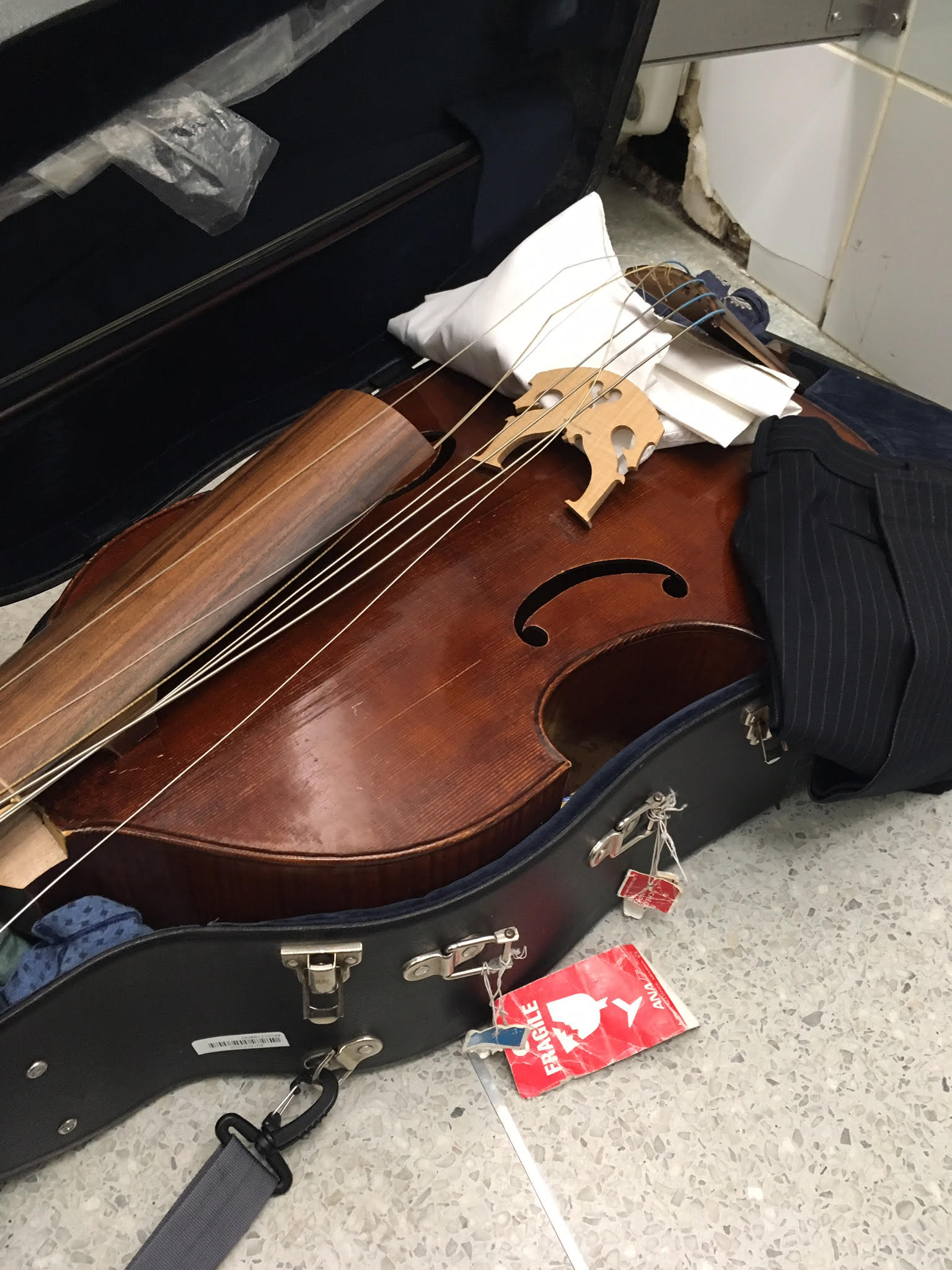 United Airlines smashes viol