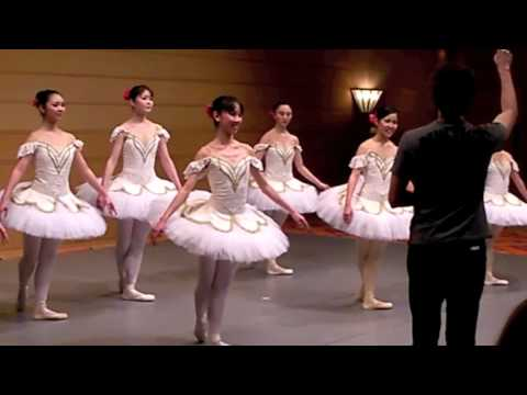 Vienna is rocked by claims of ballet abuse