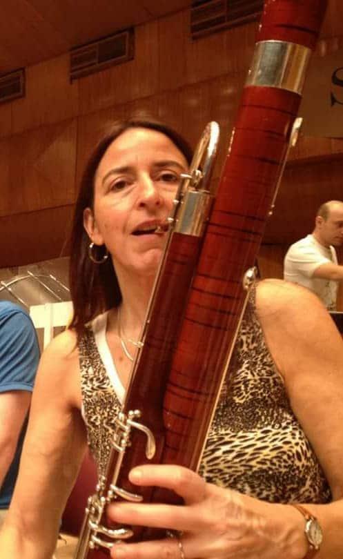 London alert for stolen bassoon