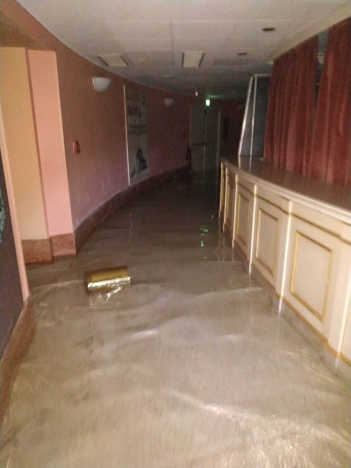 Bailout: Teatro La Fenice is under water