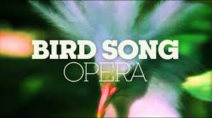 Here's one Mozart wrote strictly for the birds