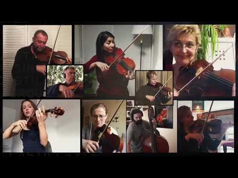 Beethoven 9th played at home, now with added musicians