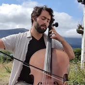 Irish cellist goes viral from cottage. Is Joe Biden watching?