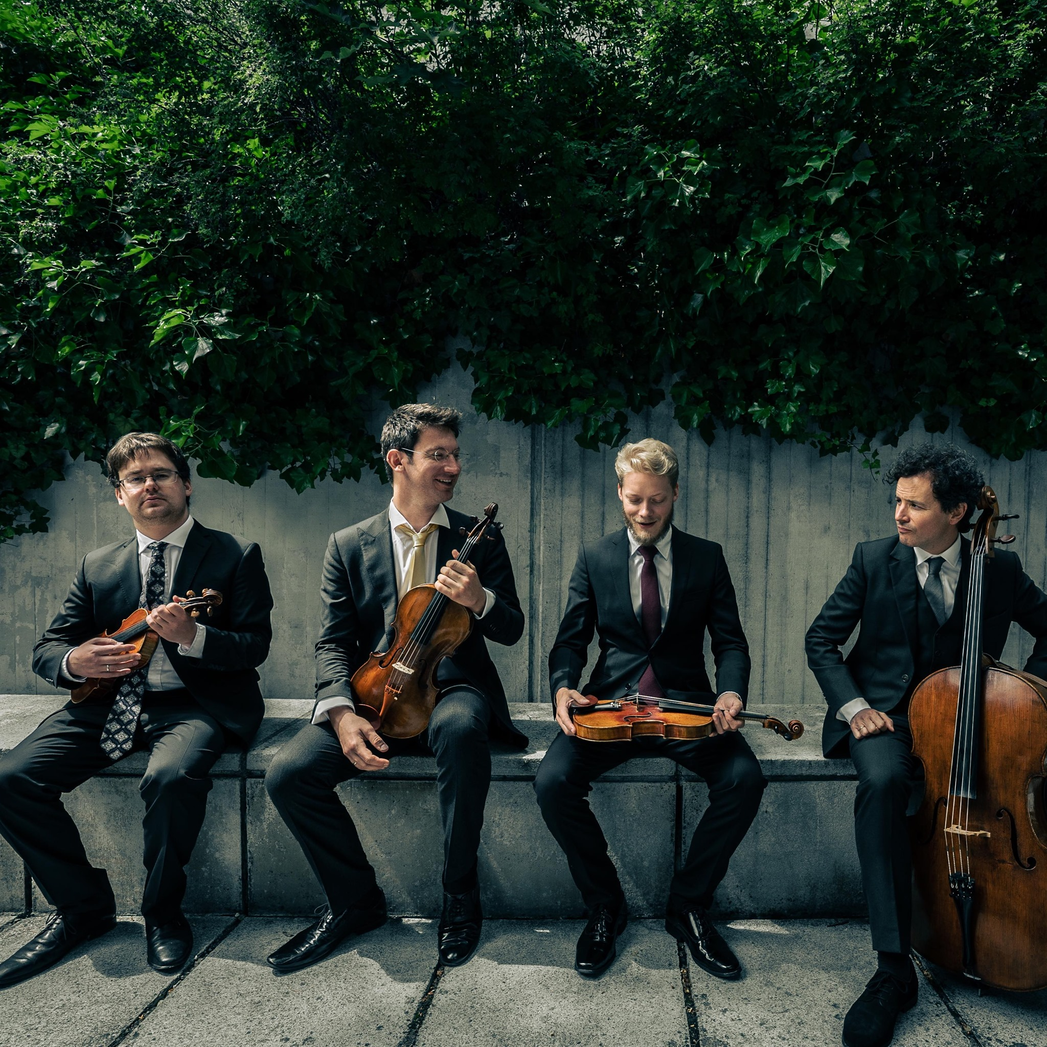 String quartet sheds its violinists